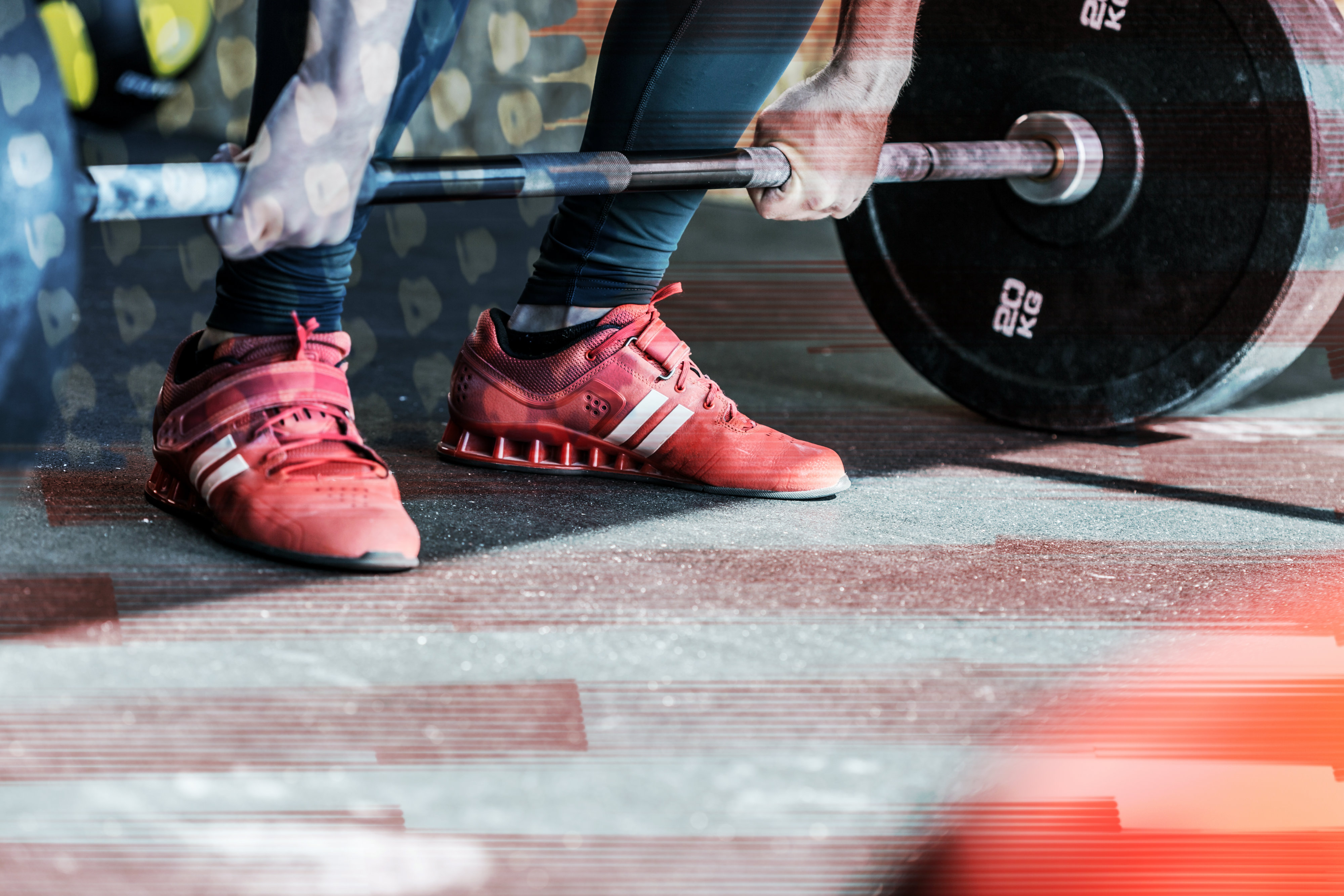 RhinoFit does heavy lifting for gym owners
