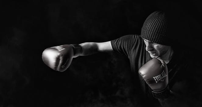 Knock out the competition with RhinoFit boxing gym management software