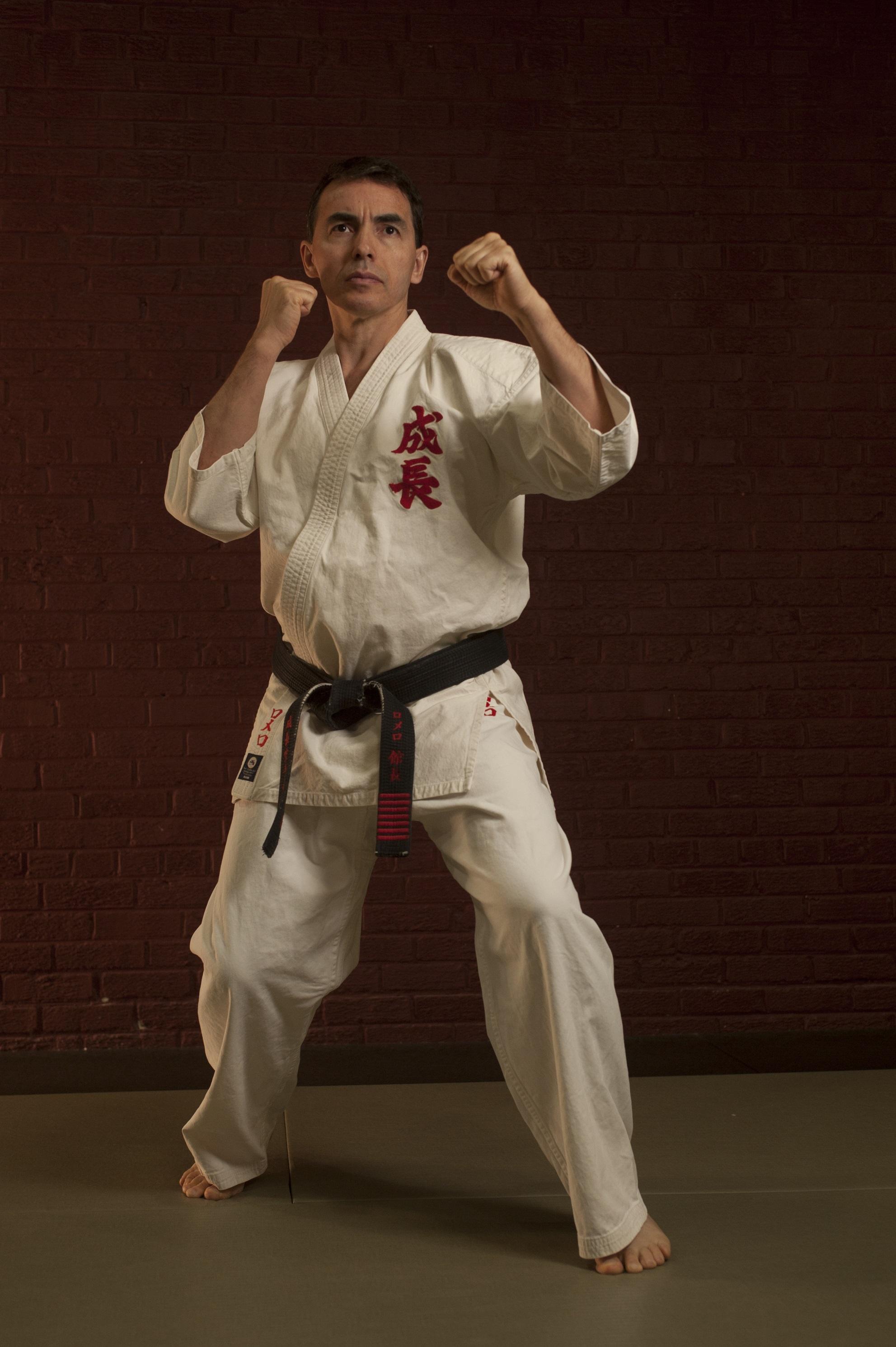 shihan fighting stance
