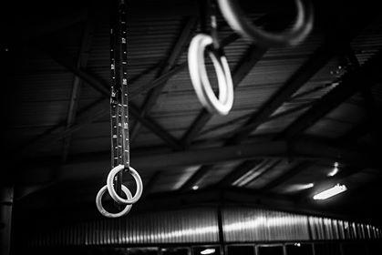 CrossFit Gym Rings