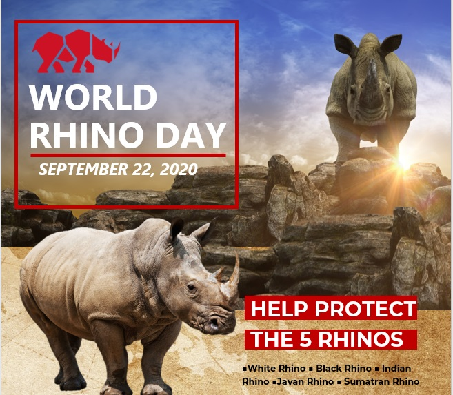 World Rhino Day 2020